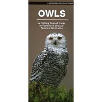 Owls: A Folding Pocket Guide to Familiar Species Worldwide-WFP1620054772