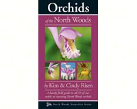 Orchids of the North Woods-AP00670