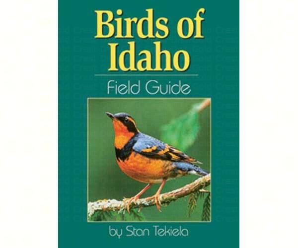 Birds Idaho Field Guide
