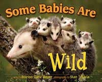 Some Babies Are Wild-AP30846