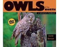 Owls of the North-AP31345