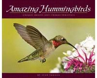 Amazing Hummingbirds AP32468