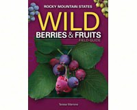 Wild Berries and Fruits of Rocky Mountains-AP32819