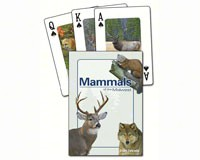 Mammals of the Midwest Playing Cards-AP32840