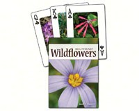 Wildflowers of the Southeast Playing Cards-AP33687