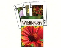 Wildflowers of the Gulf Coast Playing Cards-AP33694