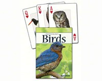 Birds of the Northeast Playing Cards-AP33854