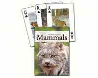 Mammals of the Northeast Playing Cards-AP33885