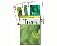 Trees of the Northeast Playing Cards-AP33915
