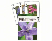 Wildflowers of the Rocky Mountains Playing Cards-AP33960