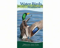 Water Birds of the Midwest (Adventure Quick Guide)-AP33977