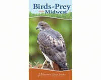 Birds of Prey Midwest (Adventure Quick Guide)-AP33984