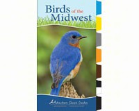 Birds of the Midwest (Adventure Quick Guide)-AP34066
