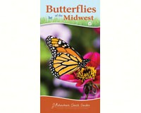 Butterflies of Midwest Quick Guide-AP35209