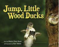 Jump, Little Wood Ducks-AP35858
