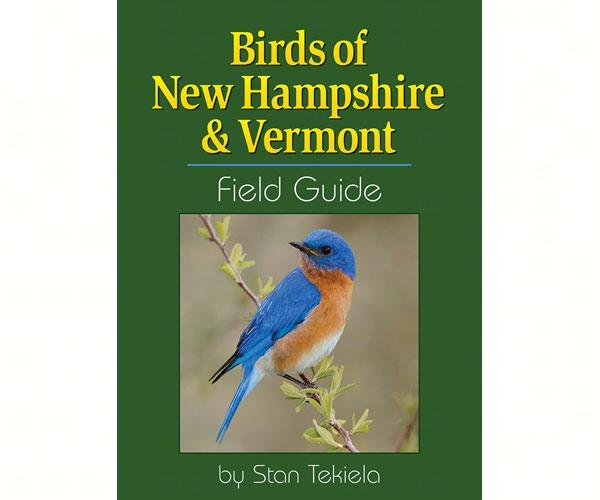 Birds of New Hampshire & Vermont-AP36404