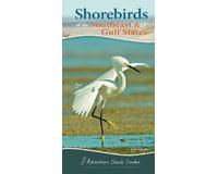 Shorebirds of the Southeast & Gulf States-AP36565