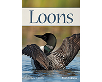 Loons Playing Cards-AP37821