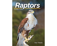Raptor's Playing Cards-AP38231