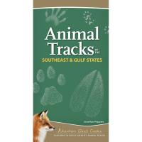 Animal Tracks of the Southeast-AP39498