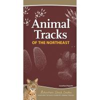 Animal Tracks of the Northeast-AP50769