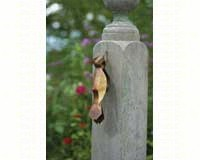 Flamed Woodpecker Wall Mount-ANCIENTAG10228