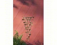 Shimmering Bells Dragonflies-ANCIENTAG1110