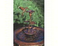Copper Dripper/Fountain Hummingbird-ANCIENTAG940HB