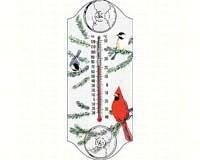 Cardinal/Chickadee-ASPECTS115