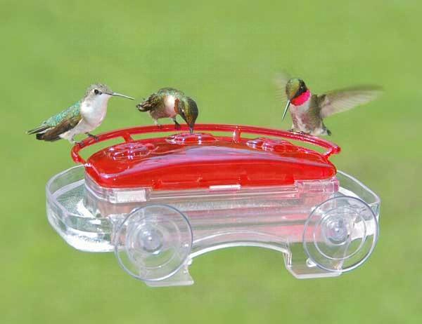 Jewel Box Window Hummingbird Feeder