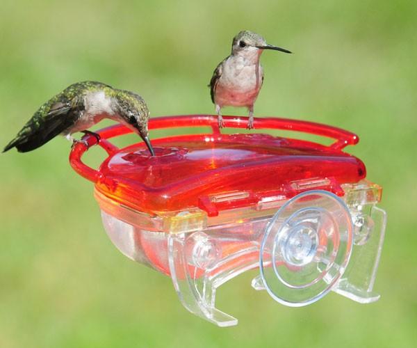 The Gem Window Hummingbird Feeder