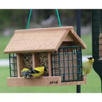 Double Option Hopper Feeder with Suet Cages-BE141