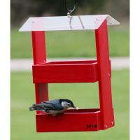 Double Option Red Platform Feeder-BE142