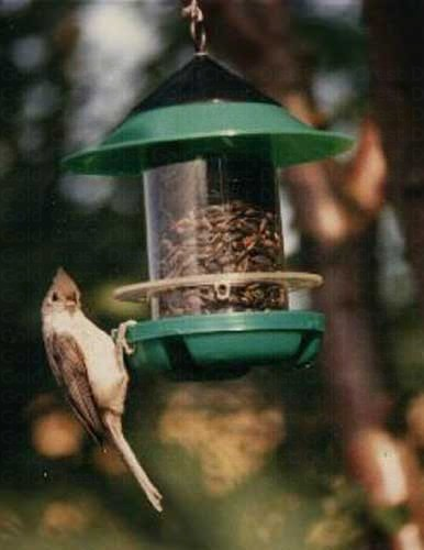 Chickadee Feeder BECKSCKD'