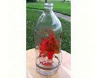 Best-1 ® Replacement 32 oz. Bottle-BESTR32