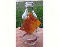 Best-1 ® Replacement 8 oz. Bottle-BESTR8