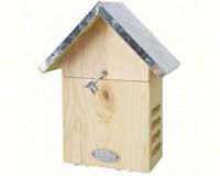 Ladybug House-BFBWA05