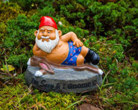 Sexy and I Gnome It Garden Gnome-BMGASI