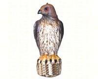 Bird-B-Gone Hawk-BBGMMRTH1
