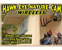 Hawk-Eye Wireless Spy Camera-BCAMHEW