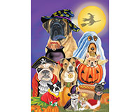 Trick or Treat Dogs Garden Flag-BLG00950