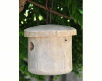 Primitive White Bird House-BYERMTCD119W