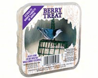 Berry Treat +Freight-CS50527