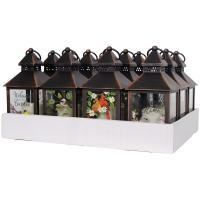 Songbird Lantern 12pc Display-CHA43137