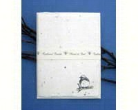 Individual Note Cards Bluebird-CPAFFN4