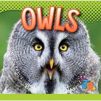 Owls-CB9781644661024