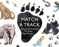 Match a Track-CB9781780679648