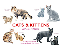 Cats & Kittens A Memory Game-CB9781786271549