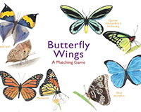 Butterfly Wings A Matching Game-CB9781786272850