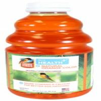 ORANGE NECTAR - CONCENTRATE - 32 OZ-CLAS705